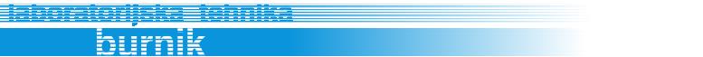 lt-burnik logo
